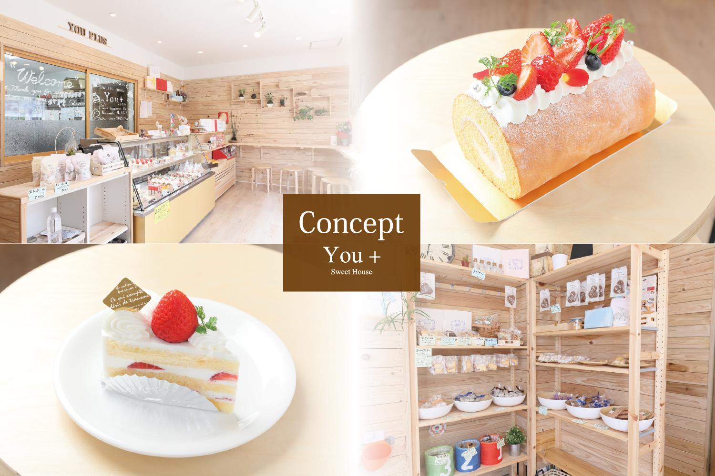 Concept_1